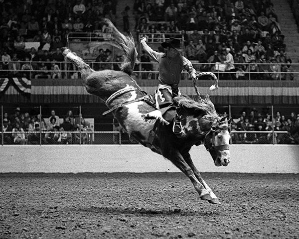 John Mcbeth Print Gustafson Rodeo Photography